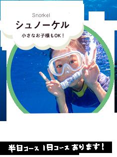 石垣島シュノーケリングツアー