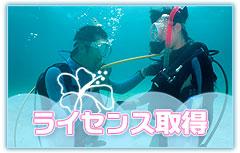 石垣島でダイビングラインセンス取得