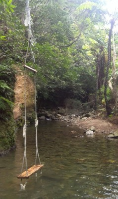 石垣島・荒川の滝