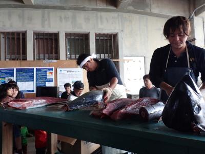 石垣島 八重山漁港