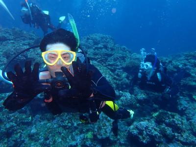 石垣島 マンタ 体験ダイビング