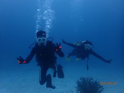 竹富島 体験ダイビング ファンダイビング