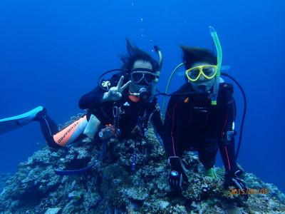竹富島 ダイビング