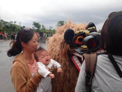 石垣島 獅子