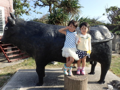 黒島 イベント 牛まつり