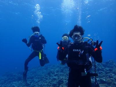 黒島 ファンダイビング