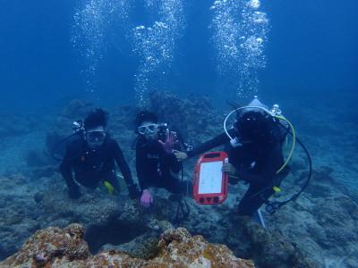 石垣島 体験ダイビング