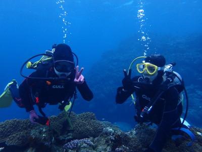 石垣島 ファンダイビング 体験ダイビング