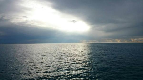 石垣島 竹富島 シュノーケリング 海