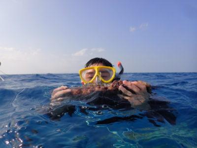 竹富島 海 シュノーケリング 船 体験ダイビング