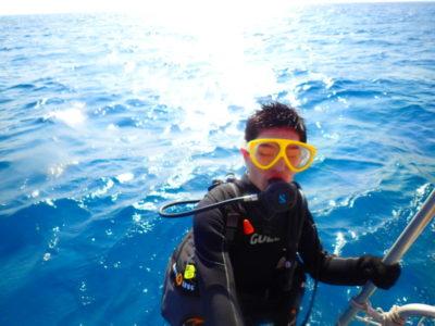 竹富島 体験ダイビング 海