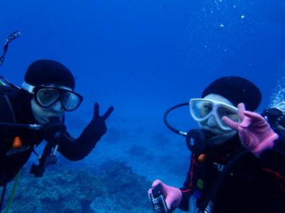 石垣島 ファンダイビング 海