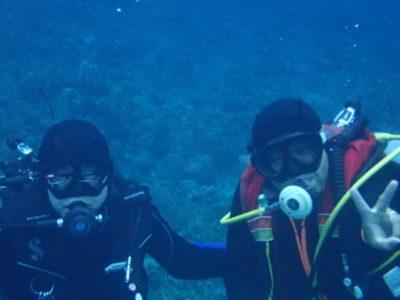 黒島 ダイビング 海