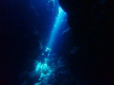黒島 ダイビング
