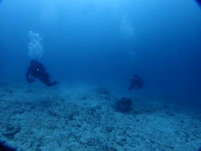 石垣島 ダイビング